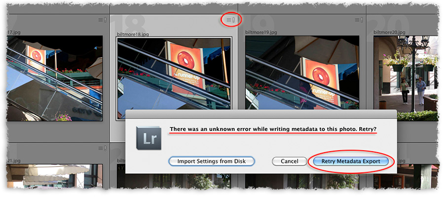 there is a metadata error in this lightroom process